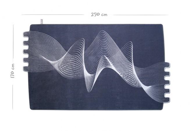 Maße 170 x 290 cm