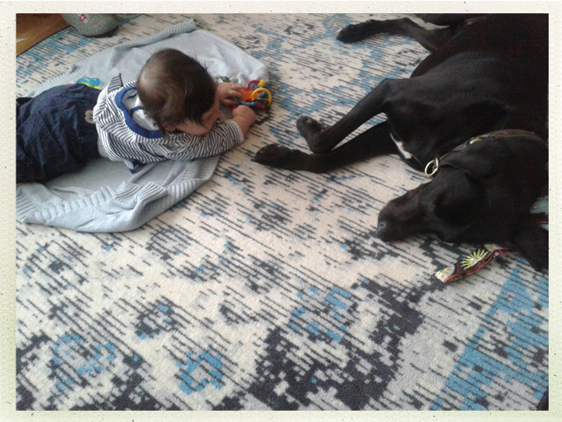 Kind & Hund